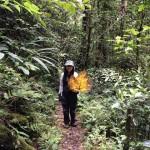 [キナバル自然公園・トレッキング]マレーシア最高峰をあえて登らずに楽しんでみた