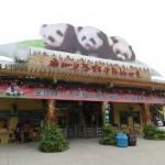 [香江野生動物世界]中国人が本気で動物園を作るとこうなる。3つ子のパンダもいるよ