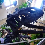 [HOTEL ADLER]ドイツの「恐竜が棲むホテル」に泊ってみた