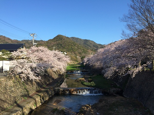 Photo 2015-04-02 7 24 37
