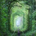ひとりぼっちの僕が「愛のトンネル」の先で見たもの