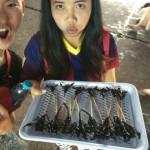 タイの屋台が仕入れの150倍で虫を売っていた話