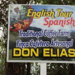 コーヒーが一番美味しかった国は?コロンビアの農園でわたしが見たもの