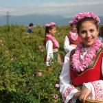 バラ美人にも会える!ブルガリアのバラ祭りのメルヘンが止まらない