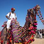 あなたはいくつツッコめる?インドの砂漠祭りがユルくて困っちゃう