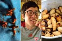 venezuela-insect-food