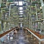 死ぬまでに行きたい!メキシコシティーのヴァスコンセロス図書館がカッコ良すぎ!