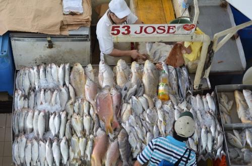 パナマの魚屋の豊富な品揃え