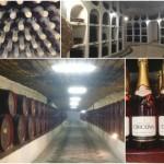 全長120kmのワイナリ…!実はワイン大国のモルドバで「クリコバ」を見学してきた