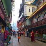 インドの秘境に潜むチベット亡命政府の拠点、ダラムサラのマクロードガンジに行ってきた