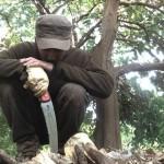 [オーストラリア・ワーキングホリデー]失敗した…。タダ働きと6月の収支報告