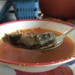 イグアナを愛でるメキシコの街「フチタン」で皮ごとイグアナ料理を食べてきた