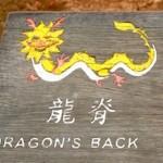 香港に実在する龍の背中…その名も「ドラゴンズバック」の上を歩いてきた(龍脊)