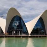海遊館クラスの施設が5つ集うスペインの「芸術科学都市」に行ってきた(バレンシア)