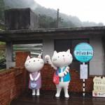 CNNが世界6大猫スポットに認定した台湾の猫の村「猴硐猫村」に行ってきた