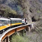 チワワの車窓から 〜チワワ太平洋鉄道で行くメキシコ横断の旅〜