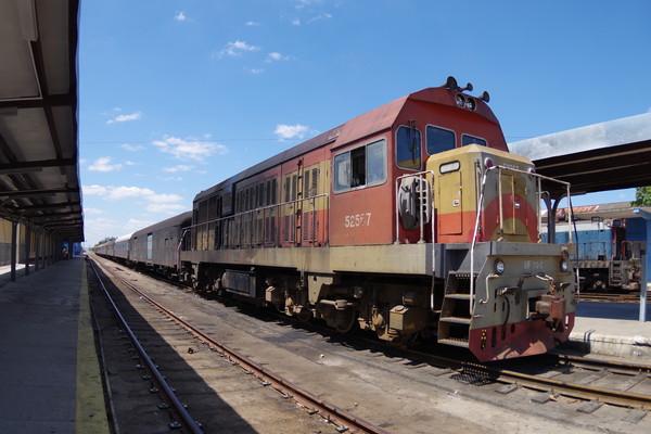 IMGP1780
