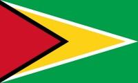 500px-Flag_of_Guyana